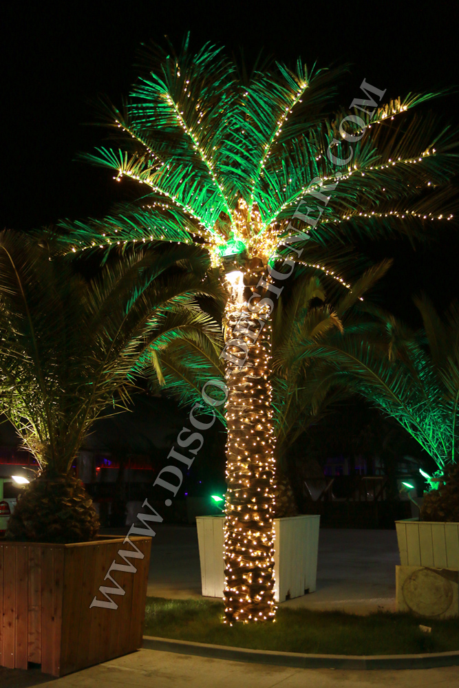 Artificial Palm Tree Led Lighting