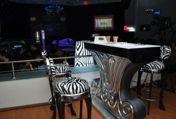 club-zebra-design